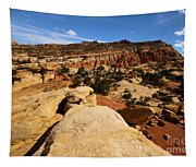 South Fruita Overlook Tapestry