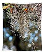 Spanish Moss Tapestry