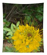 Yellow Bee Plant Sparks Tapestry