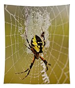 Spider Power Tapestry
