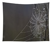 Spider Web Covered In Dew Drops Tapestry