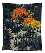 Splashes Of Fall Tapestry