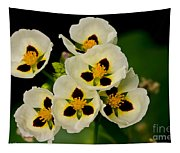 Spring Color Tapestry