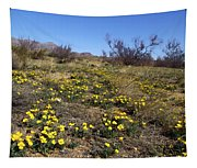 Spring Surprise Franklin Mountains Tapestry