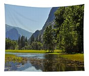 Spring Thaw Tapestry