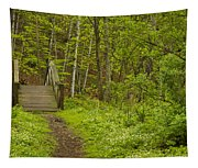 Spring Trail Bridge 3 A Tapestry