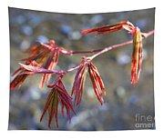 Springtime Japanese Maple Leaves Tapestry