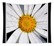 Square Daisy - Close Up 2 Tapestry