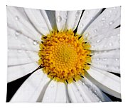 Square Daisy - Close Up Tapestry