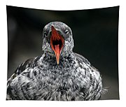 Squawk Tapestry