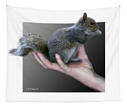 Squirrel In Hand Tapestry