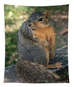 Squirrel Looking For A Hand Out Tapestry