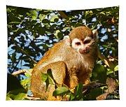 Squirrel Monkey Tapestry