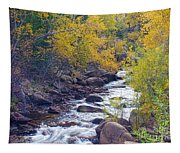 St Vrain Canyon And River Autumn Season Boulder County Colorado Tapestry
