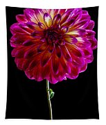 Stand Up Dahlia Tapestry