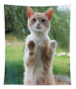 Standing Cat Tapestry