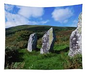 Standing Stone Alignment, Near Tapestry