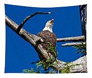 Squawking Alaskan Eagle Tapestry