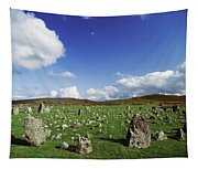 Stone Circles On A Landscape, Beaghmore Tapestry