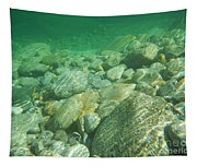 Stones Under The Water Tapestry