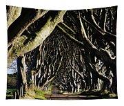 Stranocum, Co. Antrim, Ireland Tapestry