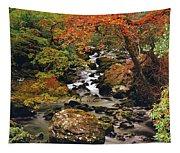 Stream Near Glengariff, Co Cork, Ireland Tapestry