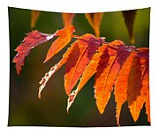Sumac In The Sun Tapestry