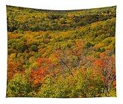 Summit Peak Autumn 6 Tapestry
