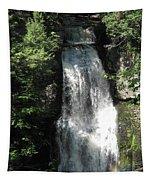 Sun On The Bushkill Falls  Tapestry