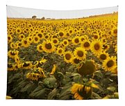 Sunflower Field Tapestry