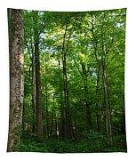 Sunlit Forest Tapestry