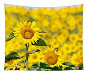 Sunny Disposition Tapestry
