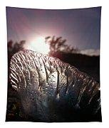 Sunset For Man-o-war Tapestry