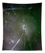 Sunshine On Swamp Spider Tapestry