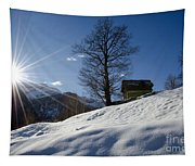 Sunshine Over The Snow Tapestry