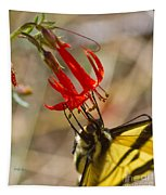 Swallowtail On Scarlet Gilia Tapestry