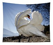 Swan In Backlight Tapestry