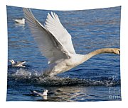 Swan Take Off Tapestry