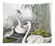 Swans, C1850 Tapestry