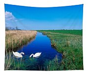 Swans On Bog, Near Newcastle, Co Tapestry