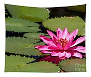 Sweet Pink Water Lily In The River Tapestry