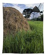 Tacumshane Windmill, County Wexford Tapestry