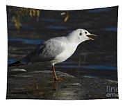 Talking Bird Tapestry