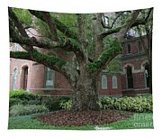 Tampa Tree  Tapestry