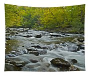 Tennessee Stream 6031 Tapestry