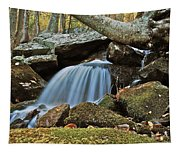 Tennessee Waterfall 5962 Tapestry