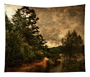 Textured Lake Tapestry