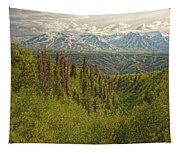 The Alsek Mountains Along The Haines Tapestry