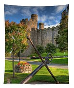 The Anchor Tapestry