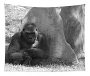 The Angry Ape In Black And White Tapestry